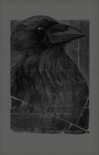 The Raven <br />Art Print